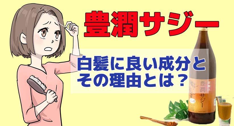 【豊潤サジー】白髪に良いと言われる成分や理由は?アイキャッチ画像