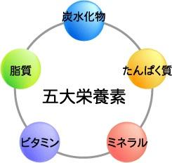 五台栄養素